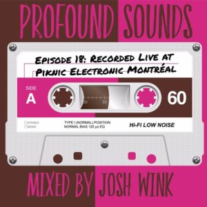 Josh Wink - Profound Sounds Episode 18: Live @ Piknic Electronik, Montreal