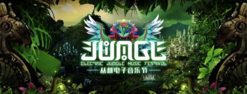 Yellow claw electric jungle music festival 2017 for Jungle house music