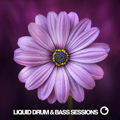 Dreazz - Liquid Drum and Bass Sessions
