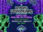 Beyond Wonderland - the Gorge Virtual Rave-A-Thon